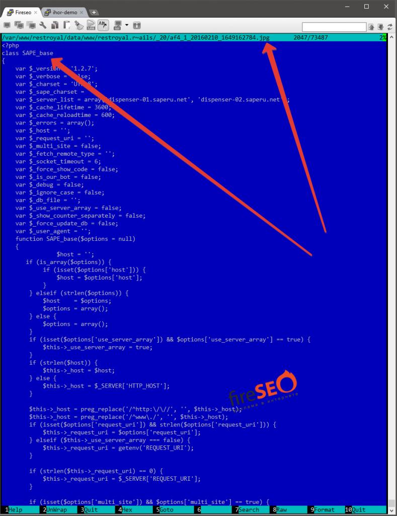 Пример отчёта удаления вирусов с сайта