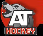 Лого Хоккей