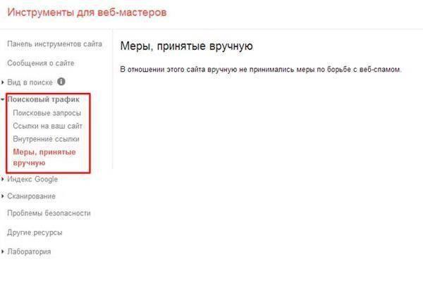 Проверка сайта на санкции поисковых систем